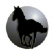 Kuda Hitam